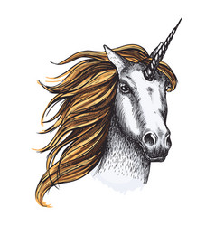 unicorn horse sketch fairy tale animal vector image