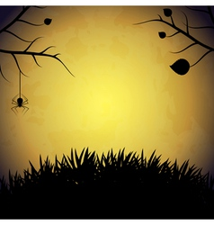 Halloween background with spider vector image vector image