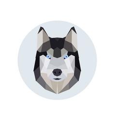 husky head polygonal style vector image