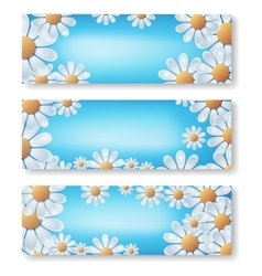 White flowers on blue background vector image vector image