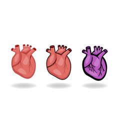 set of human heart icons in flat style vector image vector image
