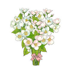 Bunch bouquet of cherry blossom flowers vector