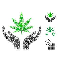 Cannabis care hands composition of hemp leaves vector