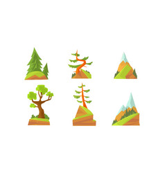 deciduous and coniferous trees beautiful summer vector image