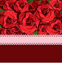 Floral background of red rose vector image