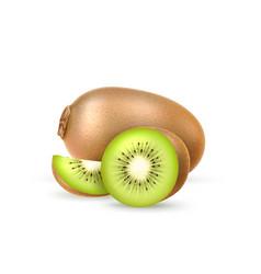 realistic fresh kiwi exotic whole fruit vector image
