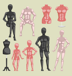 shop beauty mannequin dummy doll model vector image
