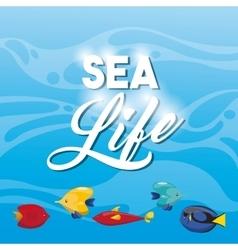 Tropical fish icon Sea life design vector