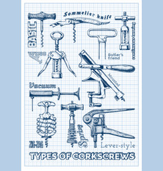 types corkscrews vector image