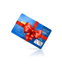 Gift Credit Card vector image