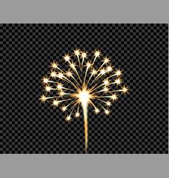 Festive golden firework salute burst flash on vector