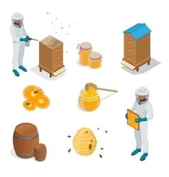 Icons apiaries and bee Bee flying in vector image