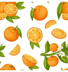 Orange fruit seamless pattern vector image