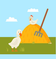 Rural life goose and chick on farm yard color card vector
