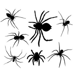 Spiders silhouettes collection vector