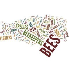 The biology of bees text background word cloud vector