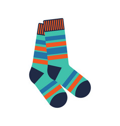 Winter socks isolated icon vector