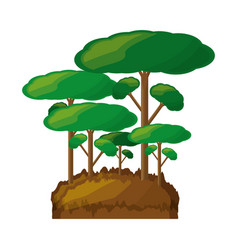 isolated big trees vector image vector image