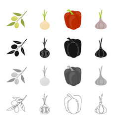 salad vegetarian food and other web icon in vector image vector image