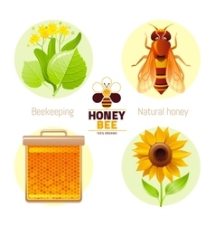 Bee honey icon set with cartoon flat icons vector