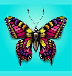 Colorful butterfly bright tattoo for your back vector