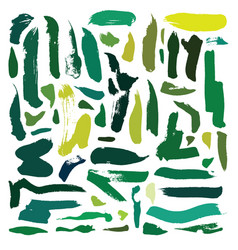 set with green brush blobs and strokes vector image