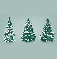 snow trees set on isolated background christmas vector image