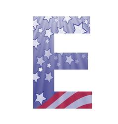 american letter E vector image