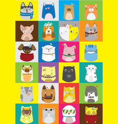cute dogs and cats set pattern of pets vector image