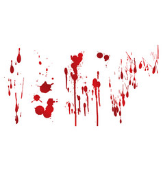 Collection various blood or paint vector