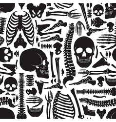 Human Bones Skeleton Pattern vector