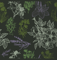 color seamless pattern in green and purple colors vector image