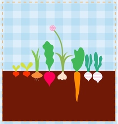 Vegetable bed vector image