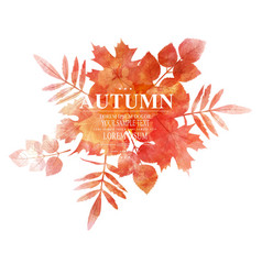 autumn orange leaves imitation of watercolors vector image vector image