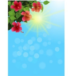 Nature background background vector image vector image