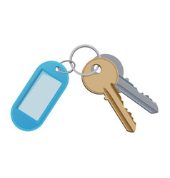 Key and keychain isolate on vector
