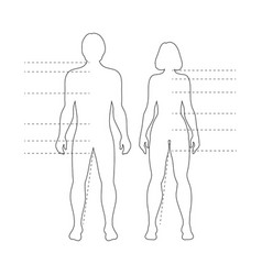 man and woman human body silhouettes vector image vector image