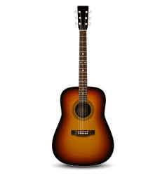 Realistic acoustic guitar vector image vector image