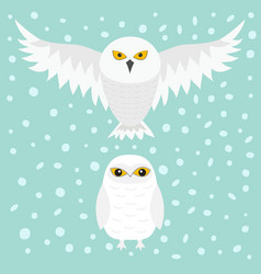 White snowy owl sitting flying bird with wings vector
