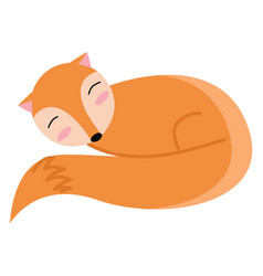 an orange sleeping fox or color vector image