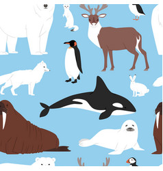 Arctic animals cartoon polar bear or vector