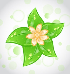 Cute eco background with green leaves and flower vector image