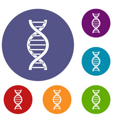 dna spiral icons set vector image