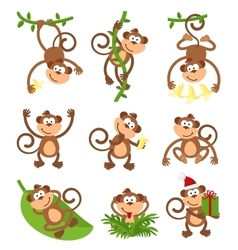 Playful monkeys character set Chinese vector
