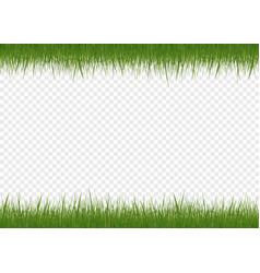 Realistic green grass vector