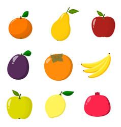 set of fruit organic vegetarian healthy food vector image