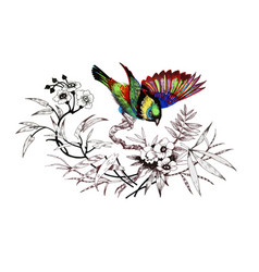 watercolor drawing bird artistic painting at vector image