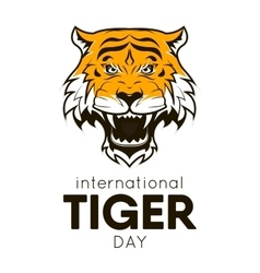 International Tiger day poster template vector image