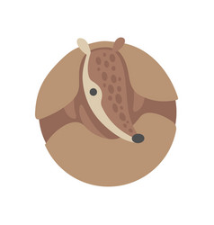 Cute armadillo curled up adorable pleistocene vector