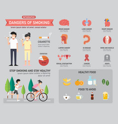 dangers of smoking infographics vector image
